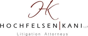 Hochfelsen | Kani LLP - Litigation Attorneys